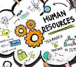 PGDM - Guide on Building a Career in the HR Department with a Combination of Education and Required Skills